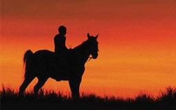 Reel Injun film