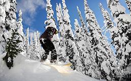 ski snowboard day